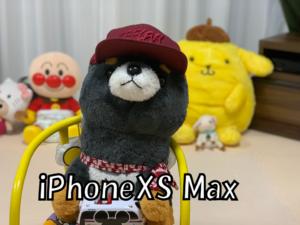 XSMaxのポートレート